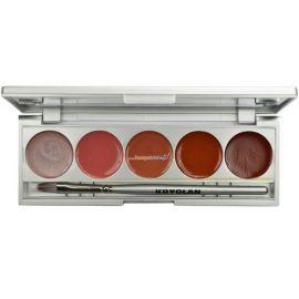 Kryolan Cream Blusher 5 Color Palette Delight